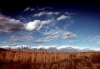 "dec sky with cattails_1 • <a style=""font-size:0.8em;"" href=""http://www.flickr.com/photos/55355744@N06/5132496913/"" target=""_blank"">View on Flickr</a>"